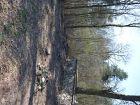 prace porządkowe marzec-kwiecień 2015_10